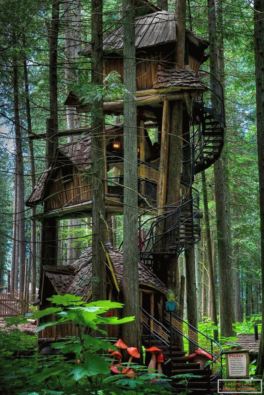Three Story Treehouse (Colombie-Britannique, Canada)