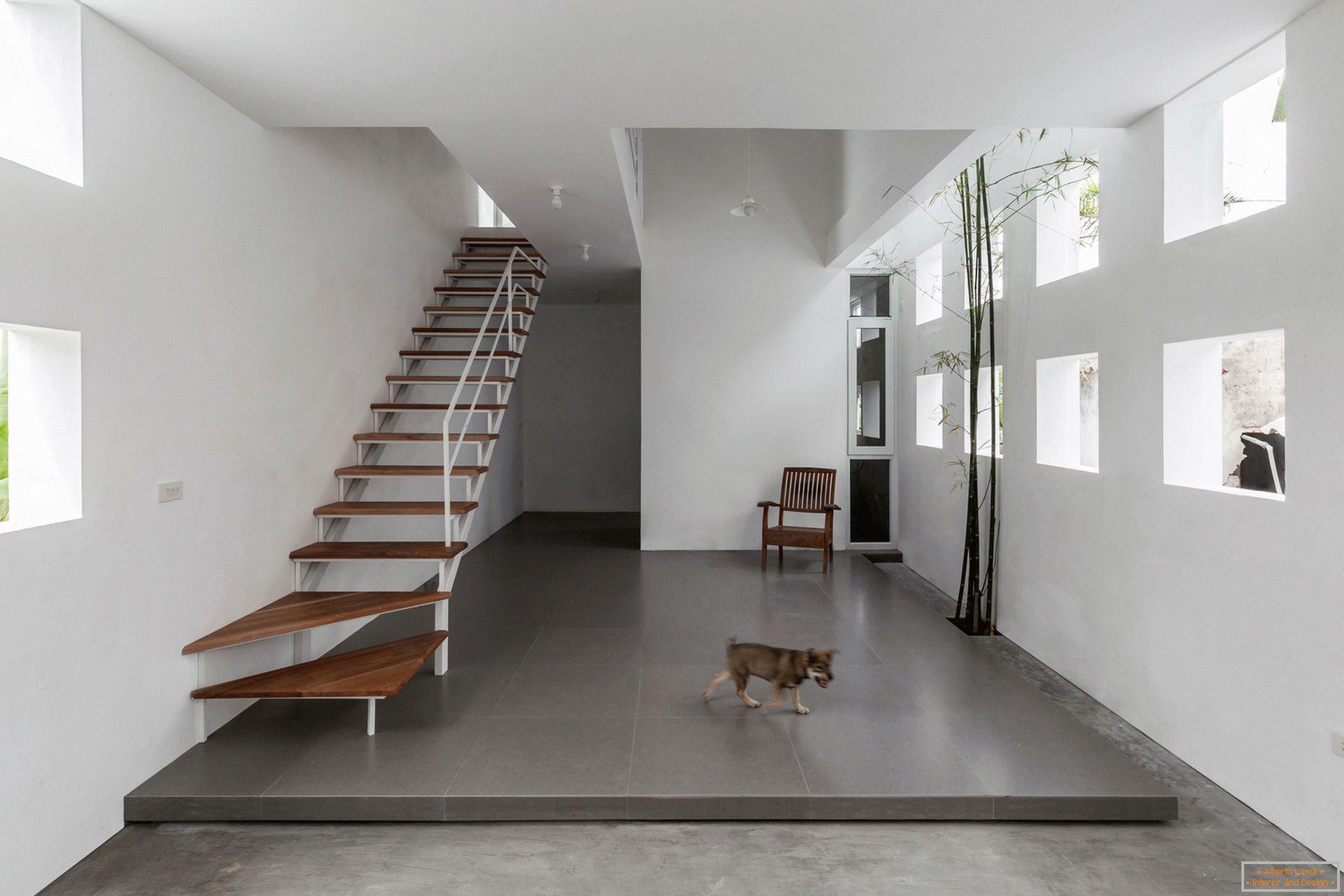 Escalier dans une maison étroite en béton